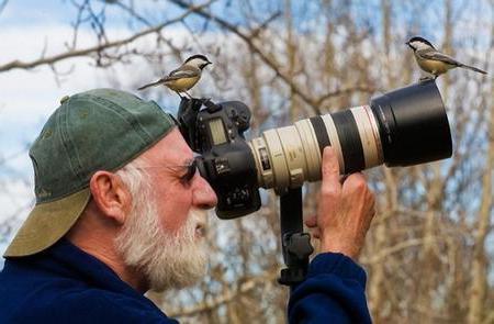 что изучает орнитолог