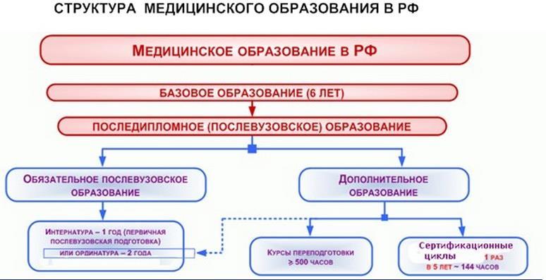 Структура медицинского образования в России