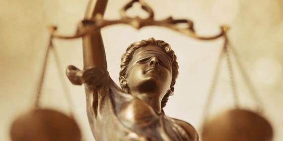 Адвокатов делят на уголовных и гражданских