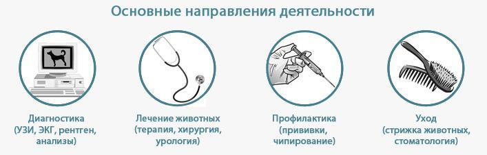Направления деятельности ветеринарной клиники ВетПост