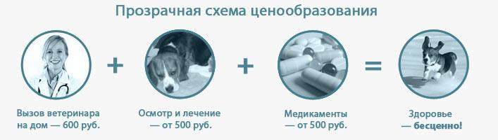 прозрачная схема ценообразования услуг ветеринарной помощи