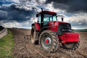 Сельское хозяйство как сфера деятельности