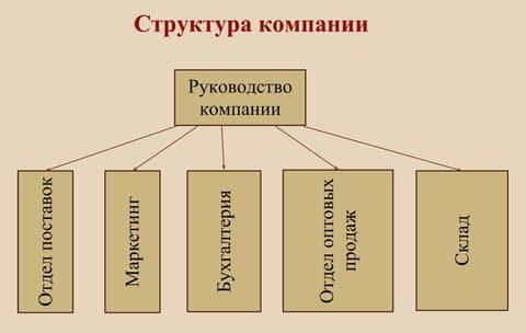 В структуре компании есть несколько отделов, которые обуспечивают работу отдела андеррайтинга