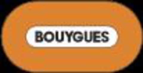 Фирменный логотип французской промышленной группы Bouygues