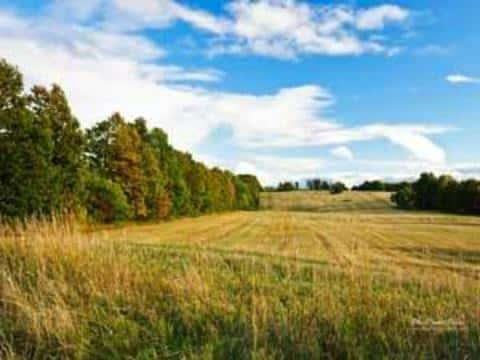 Характеристика земли не должна ограничиться только размером участка, должны бытьи другие показатели