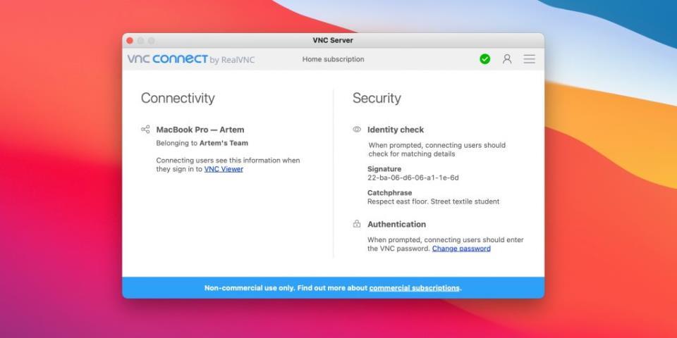 Программы для удалённого доступа к компьютеру: Real VNC