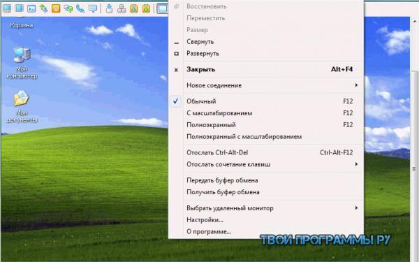 Radmin русская версия