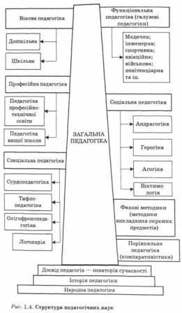 Структура педагогічних наук