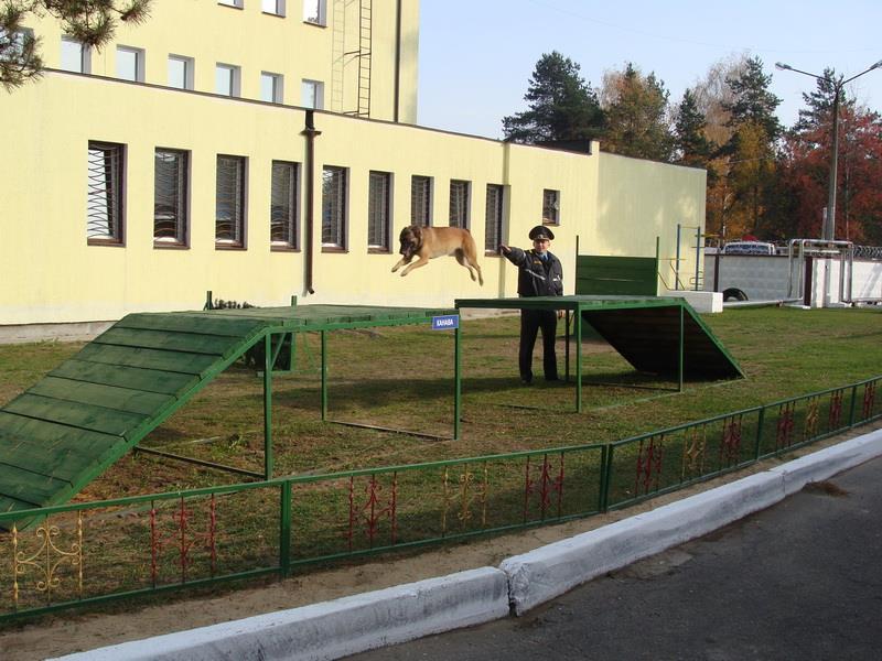 Борисовский питомник_новый размер