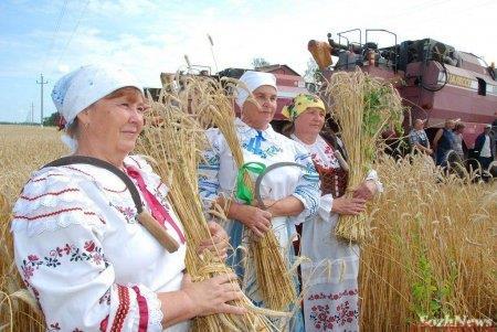 Работники сельского хозяйства получат надбавку к пенсии в размере 25%, список профессий