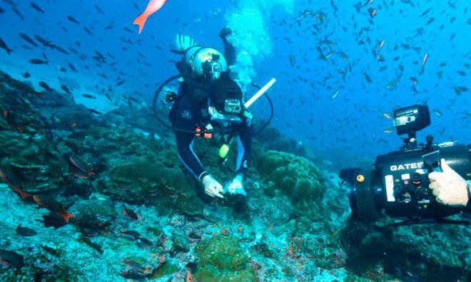 Морской биолог