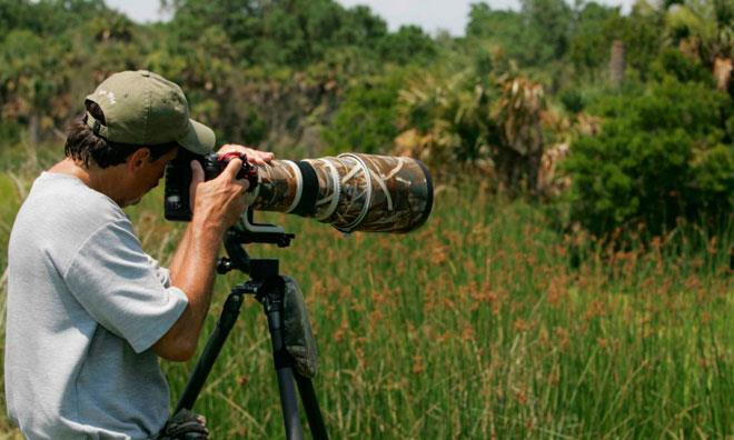 Фотограф дикой природы