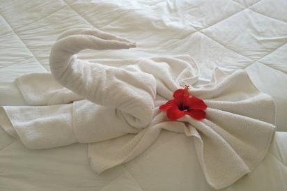 В небольших «домашних» отелях консьержа может и не быть — его функции частично берет на себя администратор, частично — горничая.
